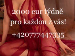 2000 eur týdně v TOP privátech!