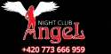Night Club Brno Angel